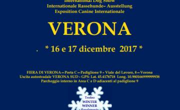 Mostra Speciale, Internazionale di Verona, 17 Dicembre 2017