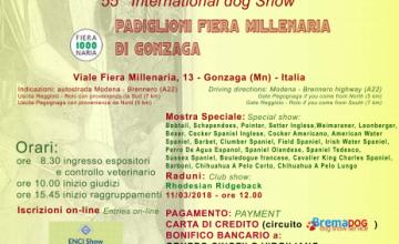 Esposizione Internazionale di Gonzaga, Mostra Speciale Leonberger, Domenica 11 Marzo 2018
