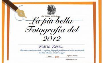 Un diploma per le foto più votate!