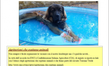 Agriturismi che ospitano animali.