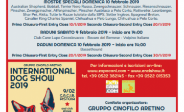 Mostra Speciale Leonberger, domenica 10 Febbraio 2019