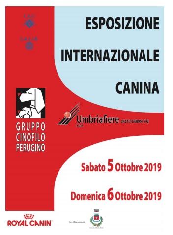 Mostra Speciale Leonberger, domenica 6 Ottobre 2019