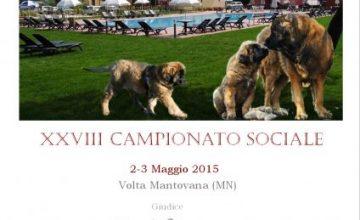 XXVIII Campionato Sociale 2015