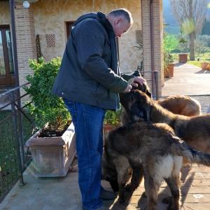 fabio-e-dogs-049b85fe1efa3f4686be23d88a8a98717becd380